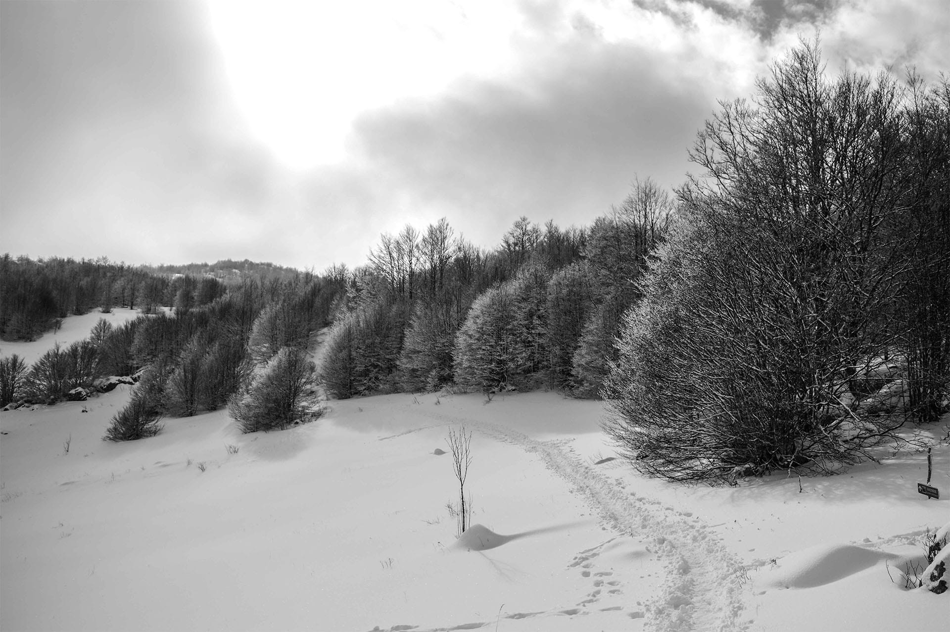 Snowy landscape on Kamesnica mountain